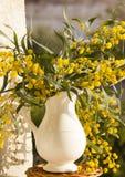 Jarra con las flores amarillas en la ventana Imagen de archivo