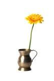 Jarra de cobre vieja con la flor Foto de archivo