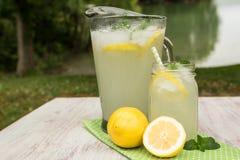Jarra y taza de cristal de limonada afuera por un lago Fotografía de archivo libre de regalías
