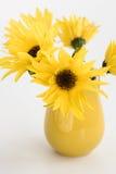 Jarro amarillo con las flores amarillas en abackground Imagen de archivo
