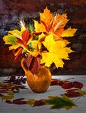 Jarro bonito da argila com folhas e trigo de outono em d de madeira azul Imagens de Stock