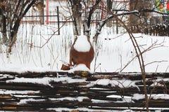 Jarro cerâmico velho em uma paliçada com neve toda ao redor Fotografia de Stock Royalty Free