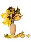 Jarro com folhas caídas Fotografia de Stock Royalty Free