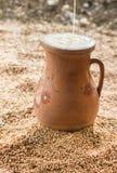 Jarro de leche, trigo Foto de archivo