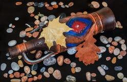 Jarro del vino que miente en agua con las hojas y las piedras Imagen de archivo libre de regalías