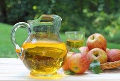 Jarro do suco de maçã imagens de stock