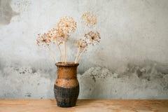 Jarro viejo con la flor seca foto de archivo libre de regalías