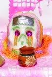 jarro y cranio Стоковые Фото