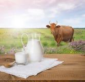 Jarro y vidrio de leche en la tabla de madera sobre prado de la vaca Imagenes de archivo