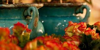 Jarros de cerámica y primavera brillante Fotos de archivo