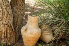 Jarros velhos perto da árvore, parque arqueológico de Shiloh, Israel imagem de stock