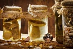 jars мышь малая Стоковое Фото