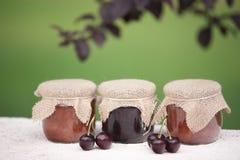 Jars av driftstopp Royaltyfri Bild