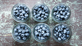 Jars with blueberries fruit Stock Image