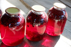 Jars with fruit compote Stock Photos