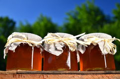 Jars full of delicious fresh honey in apiary Royalty Free Stock Photos