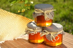Jars full of delicious fresh honey linden flowers  Royalty Free Stock Image