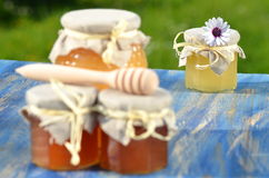 Jars full of delicious honey and bee pollen Royalty Free Stock Images