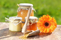 Jars full of delicious honey and bee pollen Stock Image