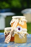 Jars full of delicious honey and bee pollen Stock Images