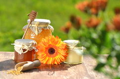 Jars full of delicious honey and bee pollen Royalty Free Stock Photography