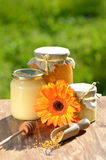 Jars full of delicious honey and bee pollen Royalty Free Stock Image