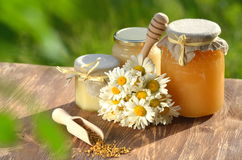 Jars full of delicious honey and bee pollen Royalty Free Stock Photos