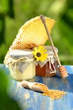 Jars full of delicious honey, honeycomb and bee pollen Royalty Free Stock Photos