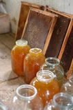 Jars of glass with fresh honey in the  apiary stock photography