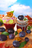 Jars with homemade  plum jam Stock Image