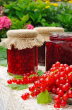 Jars of homemade red currant jam with fresh fruits. Still life royalty free stock photography