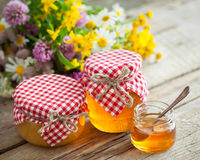 Jars of honey and healing herbs. Herbal medicine and nutraceutic Stock Image