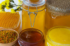 Jars of  honey. Honeycomb, pollen and flowers Royalty Free Stock Photo