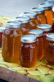 Jars of local made honey Royalty Free Stock Photography