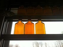 Jars of Maple Syrup at the sugar shack Stock Image