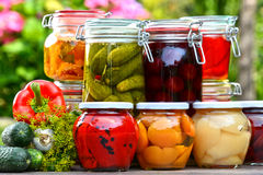 Jars of pickled vegetables and fruits in the garden Stock Image
