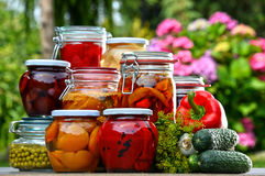 Jars of pickled vegetables and fruits in the garden Royalty Free Stock Image