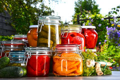 Jars of pickled vegetables and fruits in the garden Royalty Free Stock Photos