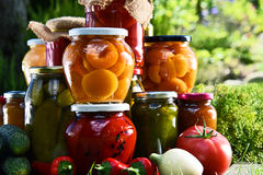 Jars of pickled vegetables and fruits in the garden Royalty Free Stock Photography