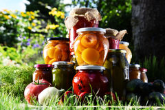 Jars of pickled vegetables and fruits in the garden Stock Images