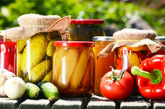 Jars of pickled vegetables in the garden Stock Images