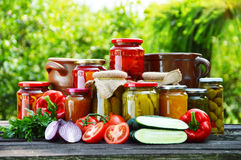 Jars of pickled vegetables in the garden. Marinated food Royalty Free Stock Image