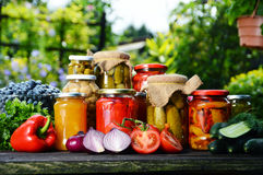 Jars of pickled vegetables in the garden. Marinated food Stock Image