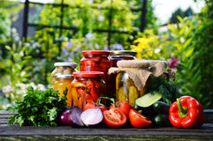 Jars of pickled vegetables in the garden. Marinated food Royalty Free Stock Photo