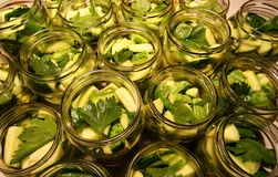 Jars of preserved cucumbers Royalty Free Stock Photography