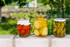 Jars of Preserved Vegetables on Garden Wall Royalty Free Stock Photos