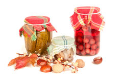 Jars of stocks for the winter on white Royalty Free Stock Photos