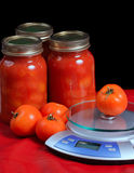 Jars of Tomatoes. Jars of canned tomatoes situated beside some fresh tomatoes and a kitchen scale royalty free stock photo