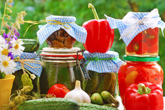 Jars of vegetable preserves in the garden. Jars of various homemade vegetable preserves on the table in the garden Stock Photos