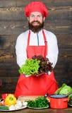 jarscy świezi sałatkowi warzywa Dieting żywność organiczna Kuchnia kulinarna vite brodaty szczęśliwy mężczyzna szefa kuchni przep obrazy stock
